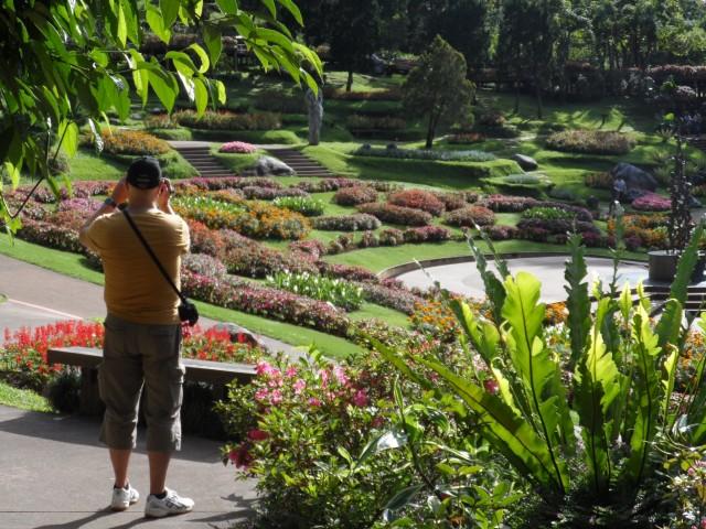 De tuin foto ellen nico - Beurs geopend op de tuin ...