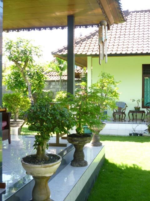 Terras achter huis let op klingklung van bamboe foto george molenaar s reisblog - Terras van huis ...