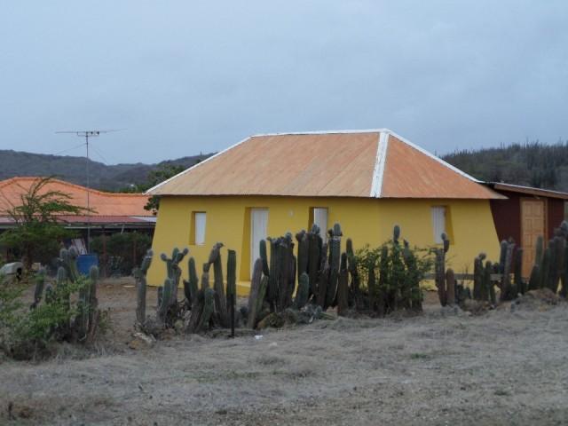Huisje met cactus afscheiding foto mariannealex s reisblog - Huisje met vide ...