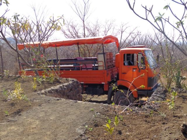 Esperanza Truck For Dogs And Cats Veterinary Care